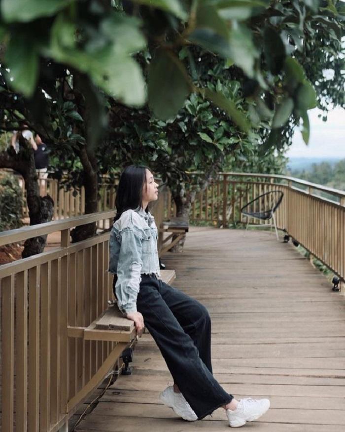 con đường Hàn Quốc ở Đà Lạt - góc bình yên