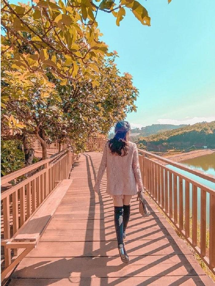 con đường Hàn Quốc ở Đà Lạt - điểm chụp ảnh đẹp
