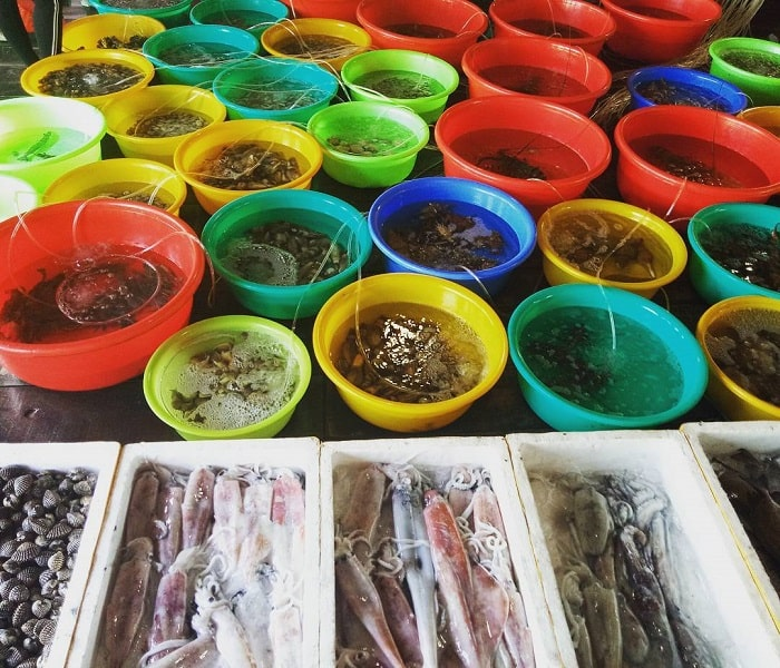 đặc sản đầm Ô Loan - đa dạng hải sản
