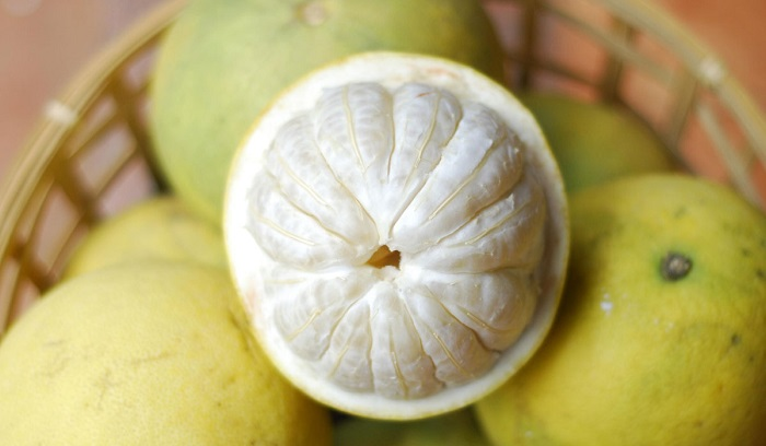 Phu Tho specialty as a gift - Doan Hung grapefruit