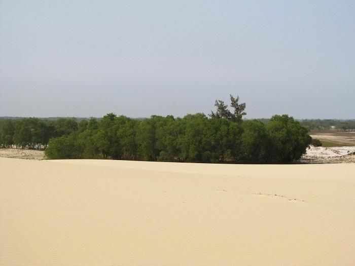 Đồi cát vàng Nhĩ Hạ - khung cảnh thiên nhiên ở đồi cát