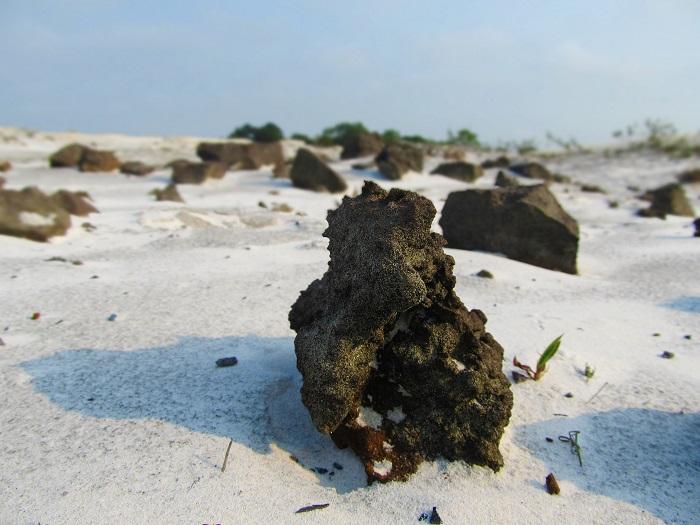 Đồi cát vàng Nhĩ Hạ - chiêm ngưỡng vẻ đẹp của đồi cát