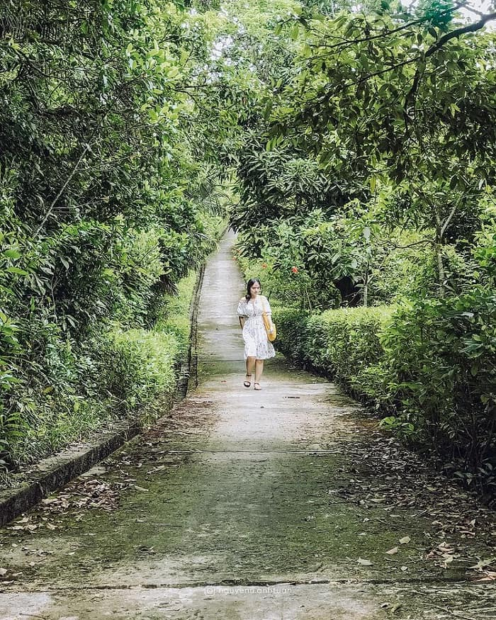 đường đến Nhất Lâm Thủy Trang Trà Đà Nẵng