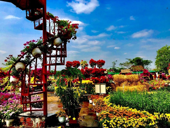 Spring - the ideal time to visit Four Seasons Flower Garden in Dong Nai