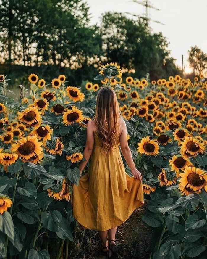 lối đi rộng - điểm ấn tượng của Đồi Hoa Mặt Trời ở Đồng Nai