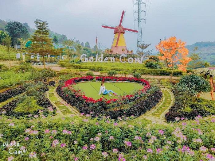 nông trại Golden Cow ở Thanh Hóa