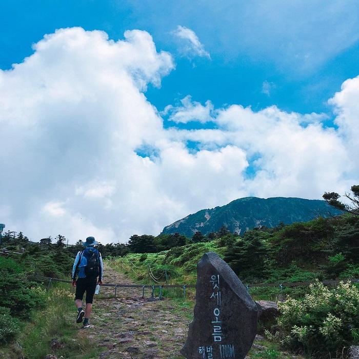 núi Hallasan Hàn Quốc - đường mòn Yeongsil