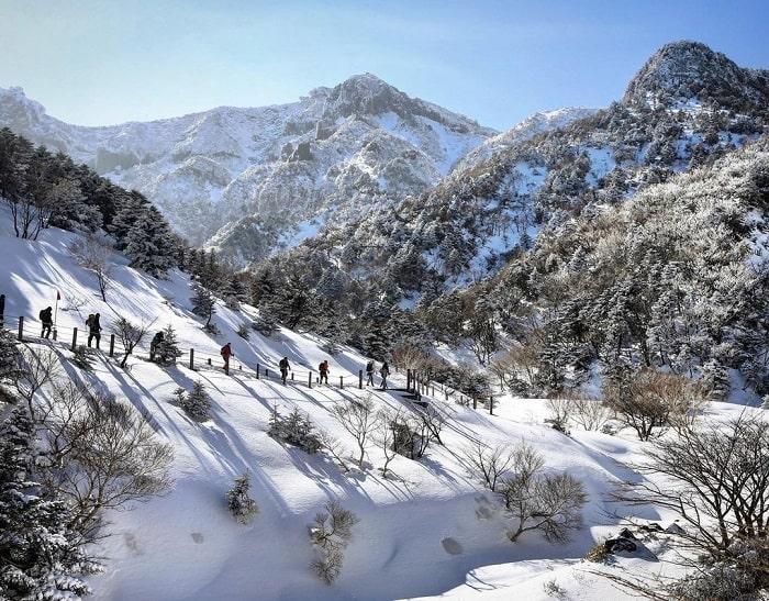 núi Hallasan Hàn Quốc - đường mòn trekking nổi tiếng