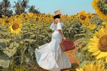 Có một thế giới cổ tích mang tên Đồi Hoa Mặt Trời ở Đồng Nai!