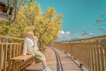 'Đổ gục' trước vẻ đẹp lãng mạn của con đường Hàn Quốc ở Đà Lạt