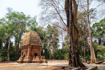 Tháp Chàm Yang Prong - nét đẹp Chăm huyền bí giữa đại ngàn Đắk Lắk