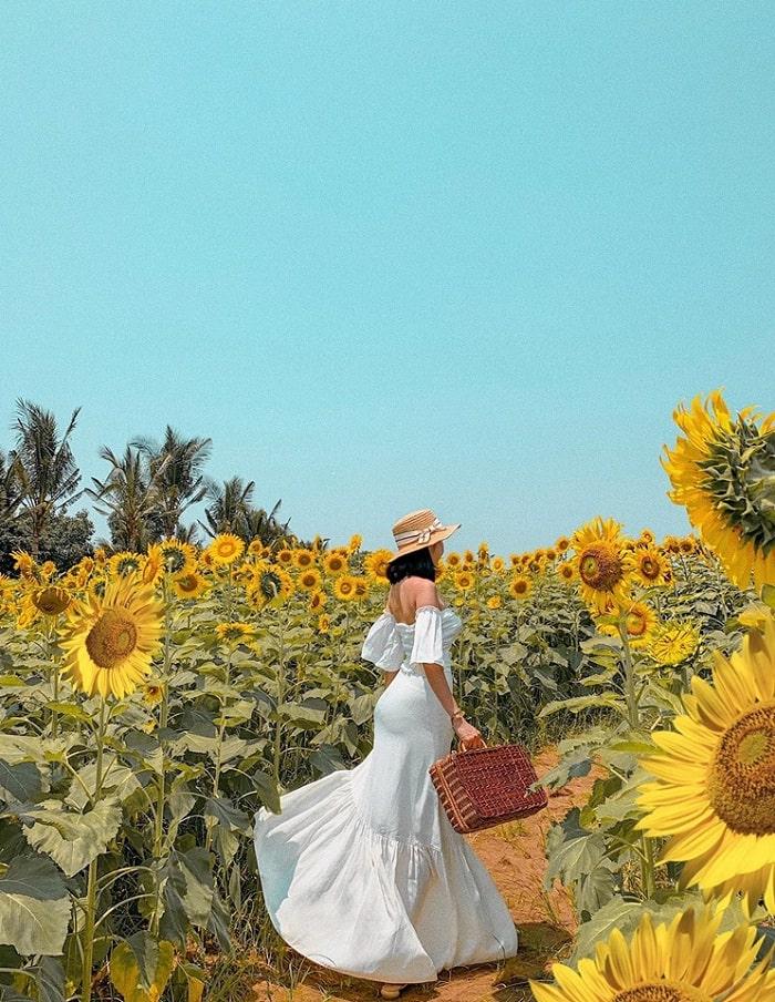 trang phục vintage - bí kíp chụp đẹp với Đồi Hoa Mặt Trời ở Đồng Nai