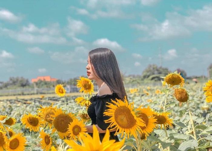 ánh sáng tốt - mẹo quan trọng để chụp tại Đồi Hoa Mặt Trời ở Đồng Nai