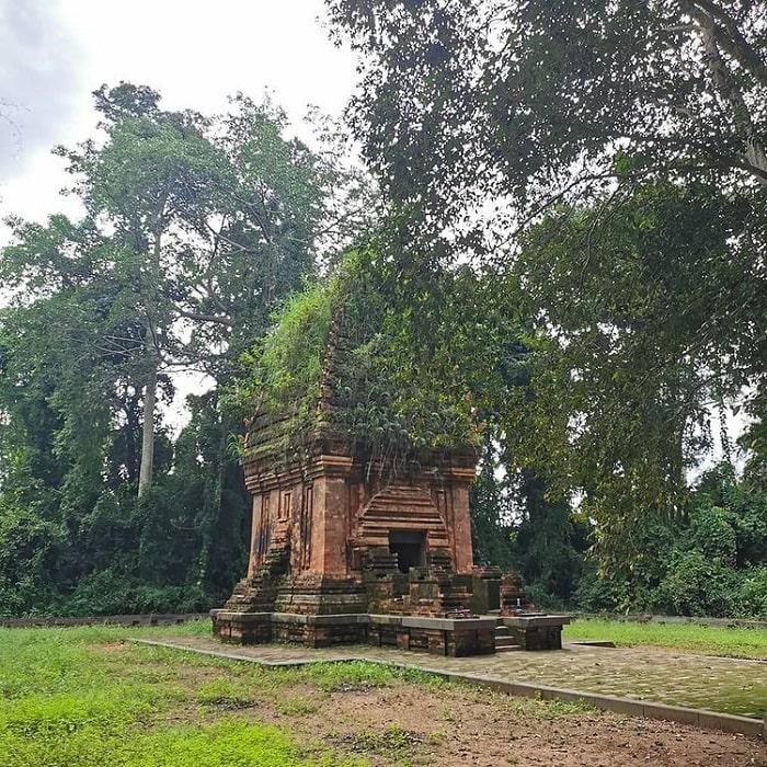 nằm dưới những tán cây - vị trí Tháp Chàm Yang Prong
