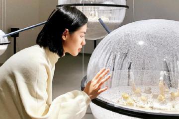 Vạn khung hình sống ảo tại Bảo tàng Mỹ thuật Đài Bắc