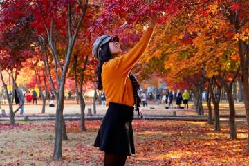 Cẩm nang du lịch Gangwon Hàn Quốc đầy đủ, chi tiết