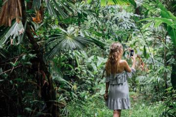 9 trải nghiệm du lịch rừng mưa nhiệt đới Daintree hấp dẫn nhất