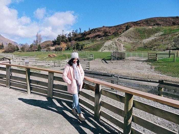 Trang trại Walter Peak High Country - một trong những địa điểm du lịch Queenstown tuyệt vời