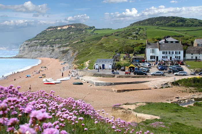 You can use the bus and train network to explore the Jurassic coast