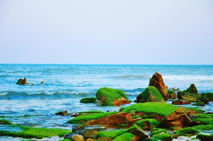 Biển Hoành Sơn - Bãi biển đẹp ở Hà Tĩnh