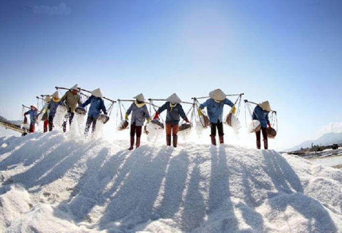 Image of people working hard to make salt in Phuong Cuu salt field