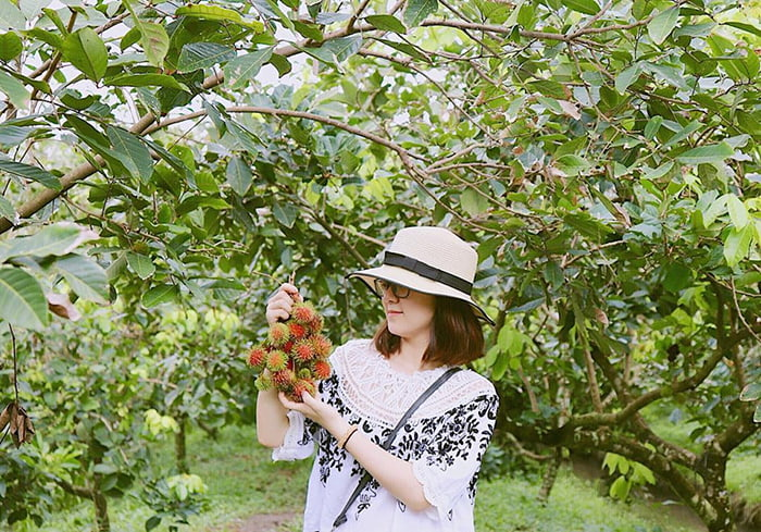 Bật mí 5 vườn trái cây Tiền Giang - Chính Thương là miệt vườn