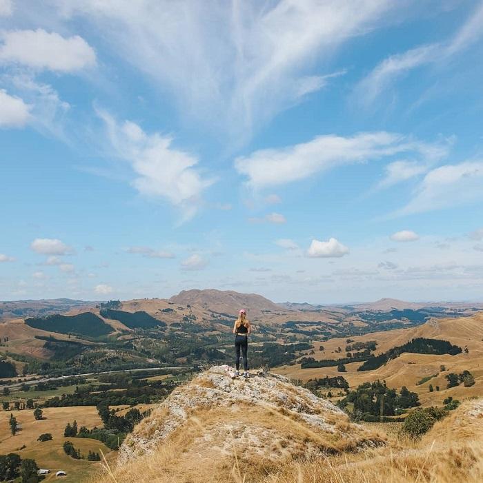 Các khu rừng Karaka phát triển tốt - Đỉnh Te Mata New Zealand