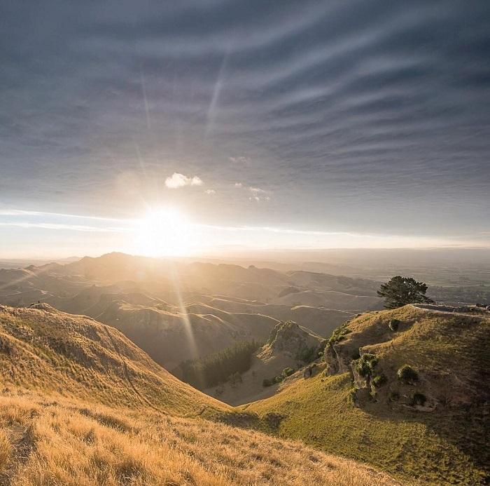 Công viên Te Mata có một mạng lưới rộng lớn các đường mòn được hình thành - Đỉnh Te Mata New Zealand