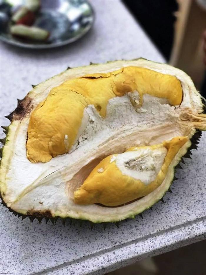 Bật mí 5 vườn trái cây Tiền Giang - thưởng thức trái cây ngon tại chỗ