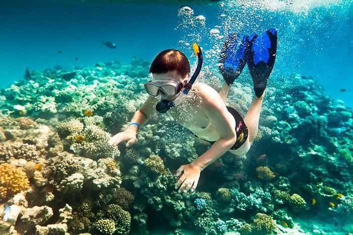 du lịch Côn Đảo tháng 4 - trải nghiệm lặn ngắm san hô