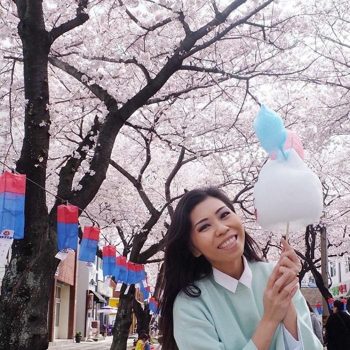 du lịch Hàn Quốc tháng 4 - lễ hội hoa anh đào Jeju