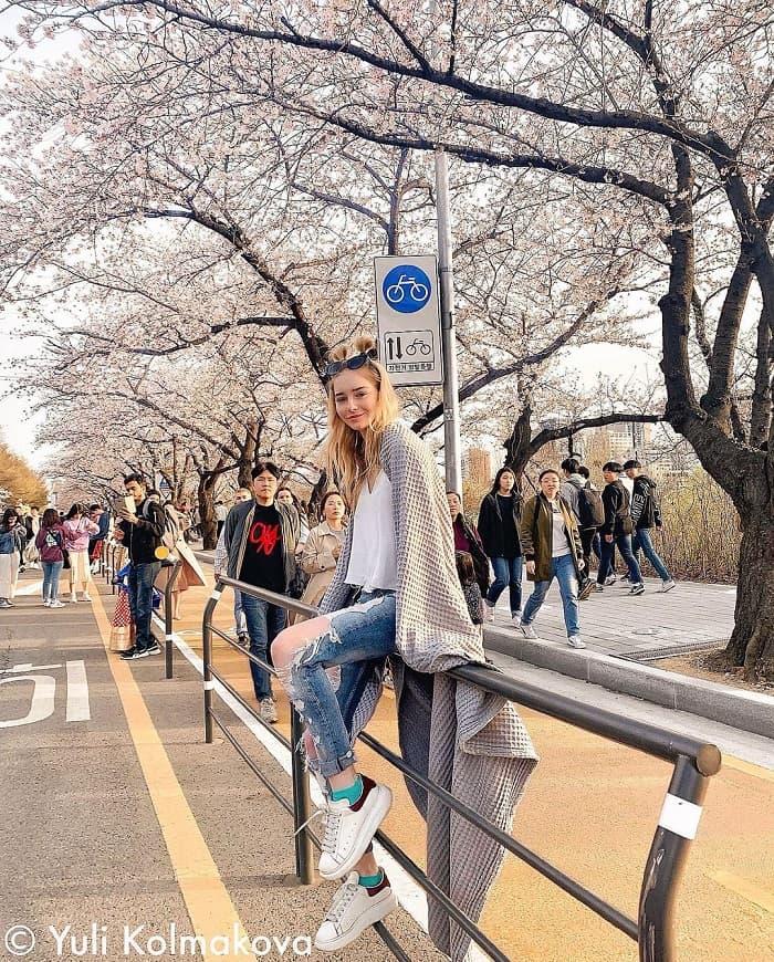du lịch Hàn Quốc tháng 4 - lễ hội Yeongdeungpo Yeouido