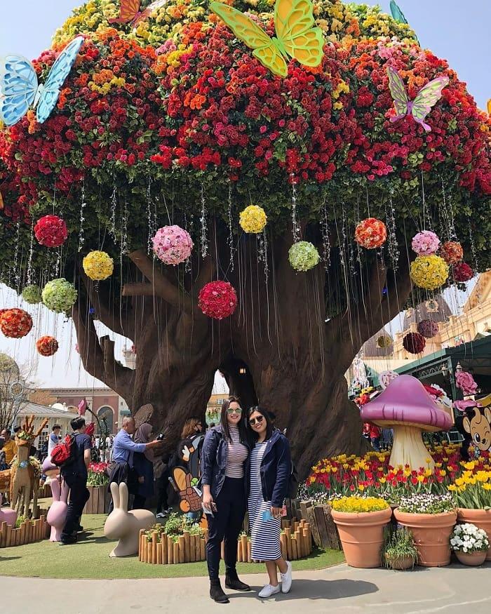 du lịch Hàn Quốc tháng 4 - lễ hội hoa tulip Everland
