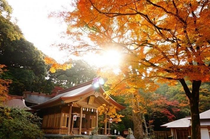 Japan travel month - December Kyushu
