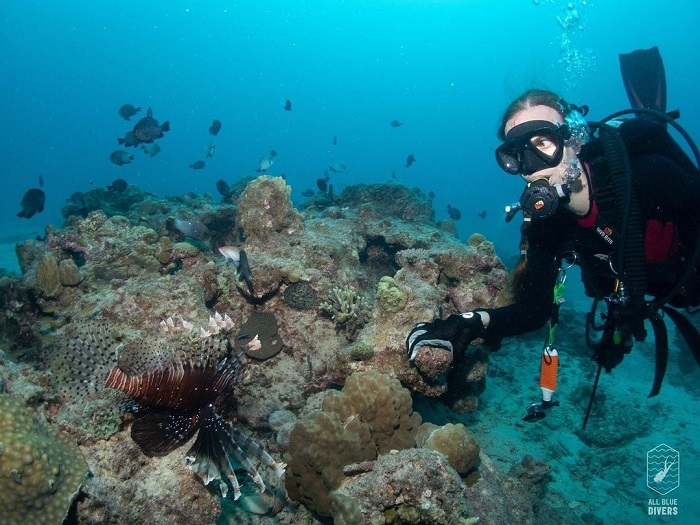 Japan travel in months - February scuba diving
