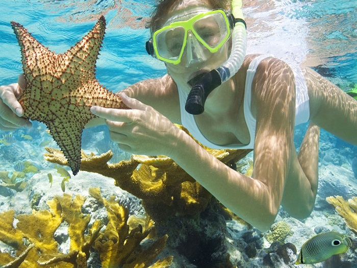 Phu Quoc tourism season is the most beautiful?  - Scuba diving to watch the corals