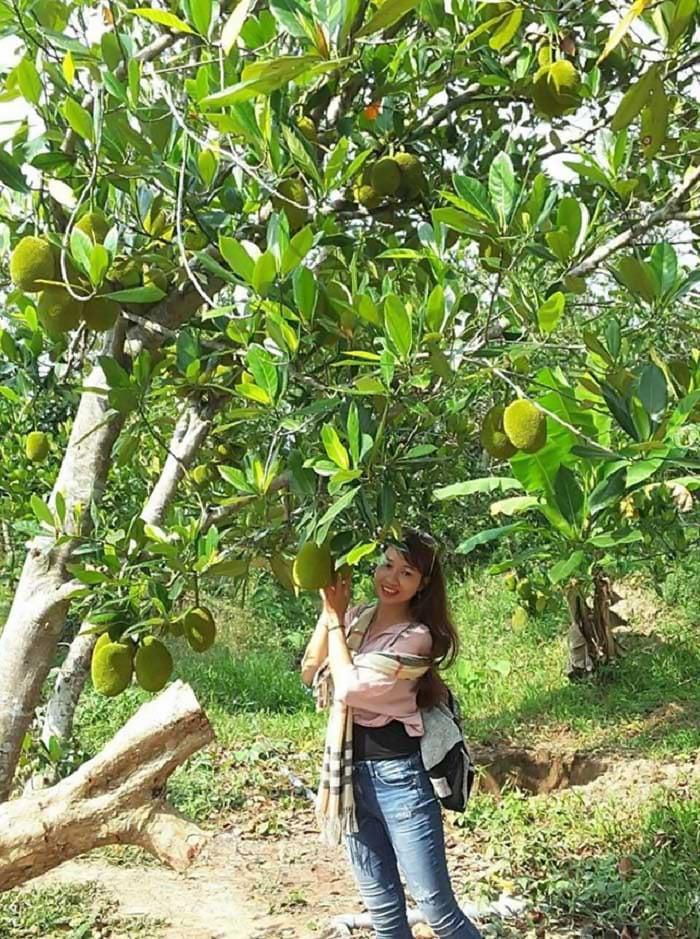 Bật mí 5 vườn trái cây Tiền Giang - Du lịch Tiền Giang