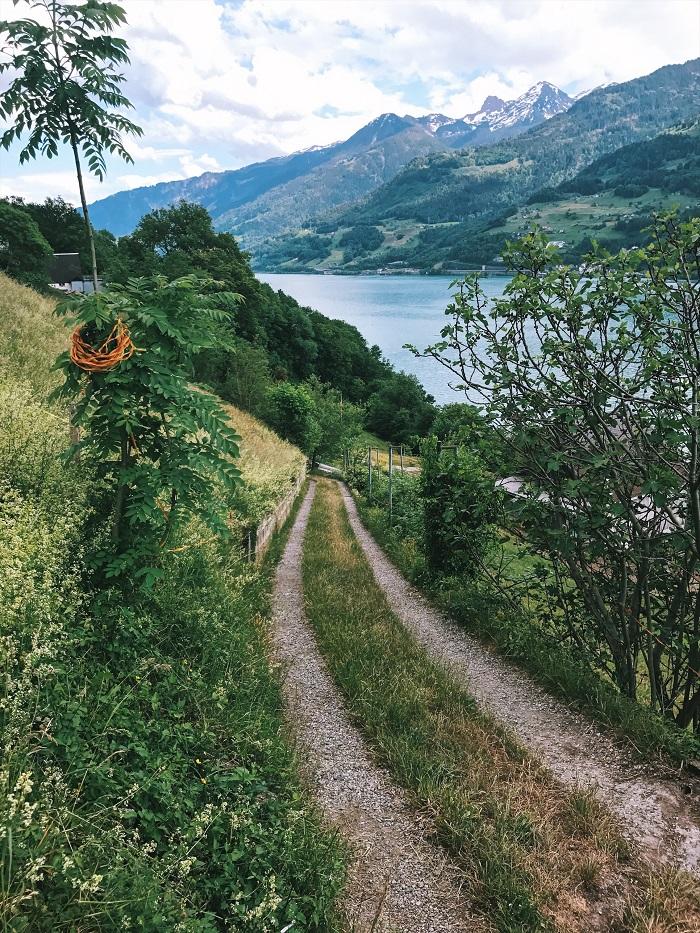 Hồ Walensee với khung cảnh thiên nhiên tuyệt đẹp