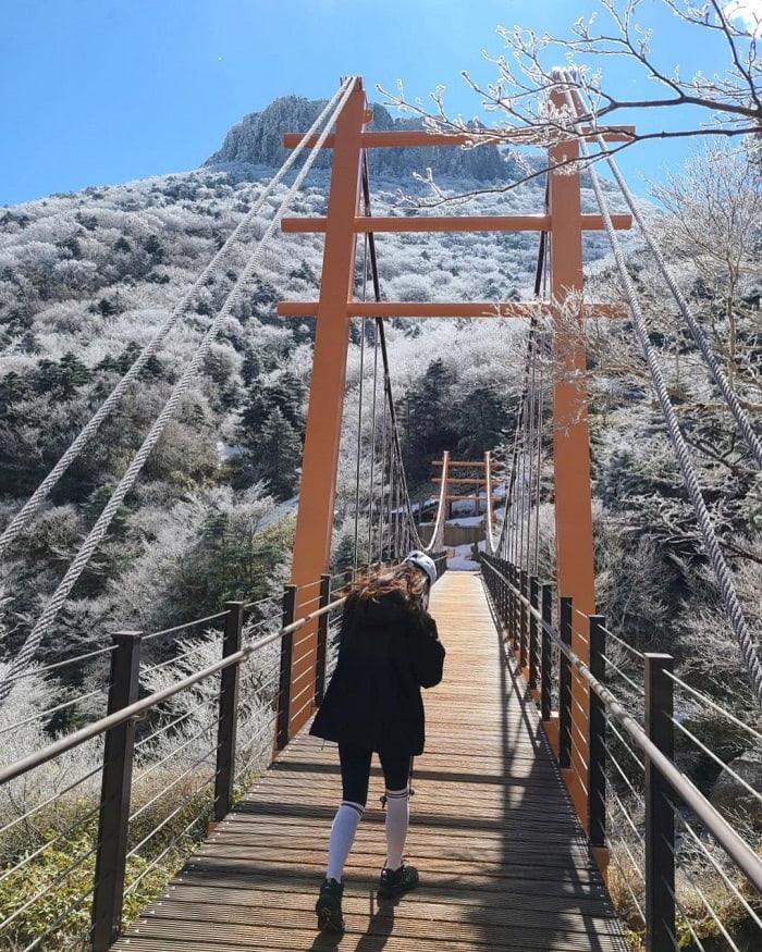 Jeju travel experience - climbing Hallasan mountain