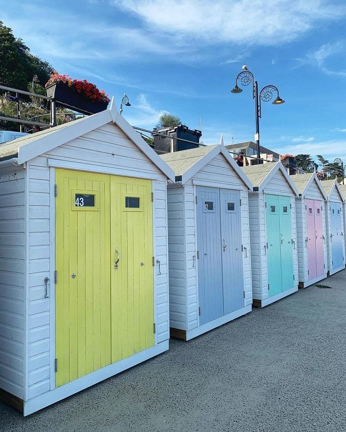 On the shores of Lyme Regis - Jurassic Coast