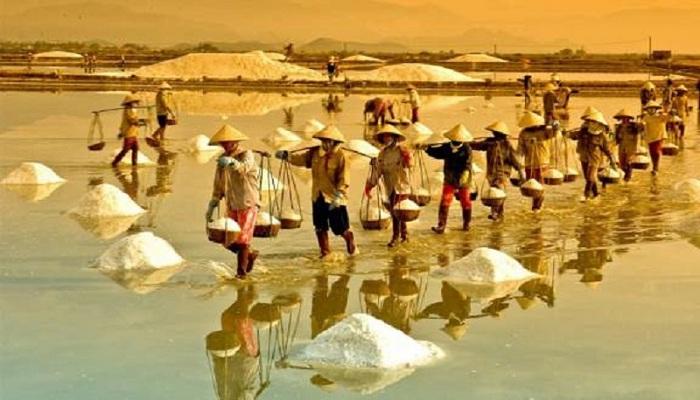 Farmers bring salt to bring to Phuong Cuu salt field