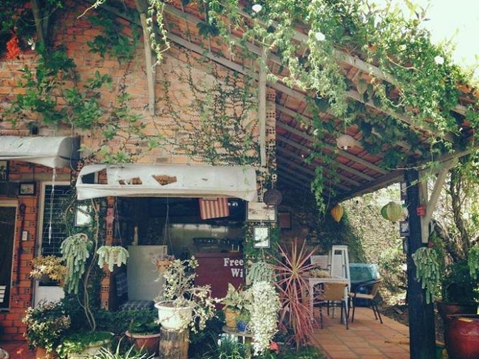 quán cafe cho cặp đôi ở Đà Lạt - Ami cafe xanh mát