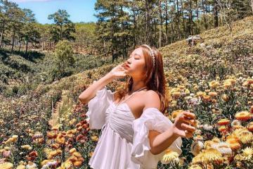 'Lạc lối' trong sắc vàng rực rỡ trên đồi hoa bất tử Đà Lạt