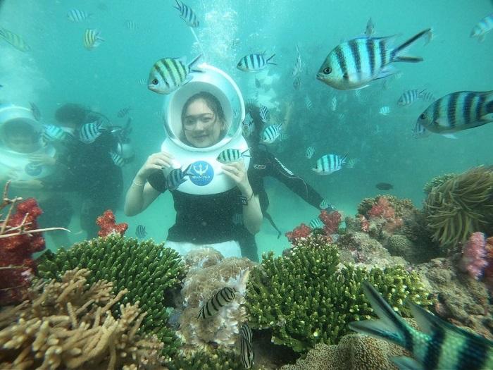 tour Phú Quốc 3N2Đ từ Sài Gòn - lặn ngắm san hô
