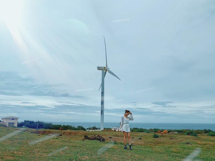 Chất phát ngất' với 4 cánh đồng quạt gió đẹp nhất Việt Nam