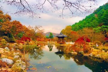 List 5 địa điểm đẹp ở Hàn Quốc nhất định phải đi 1 lần trong đời