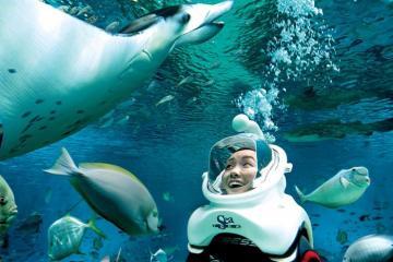 Hành trình du lịch đảo Sentosa - Thiên đường giải trí ở Singapore
