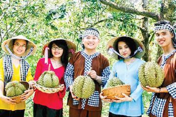 Ghim ngay 3 vườn trái cây ăn sầu riêng mệt nghỉ gần ngay Sài Gòn