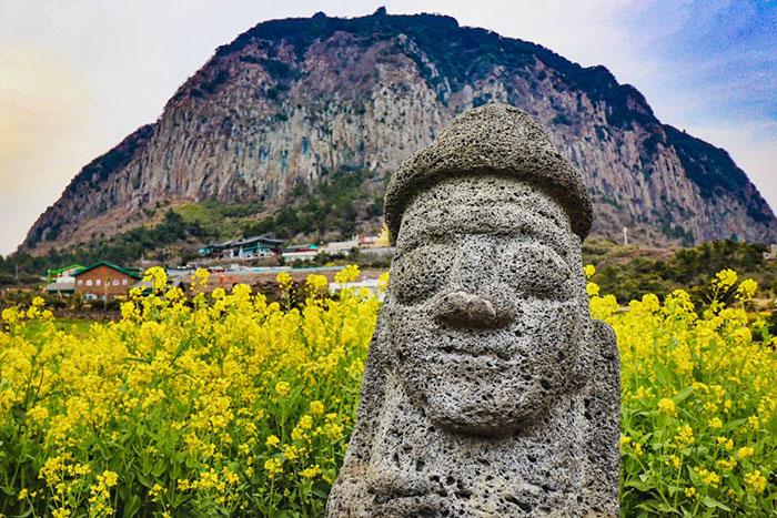 Tượng Đá Dol Hareubang Ở Đảo Jeju Và Truyền Thuyết Về Nó
