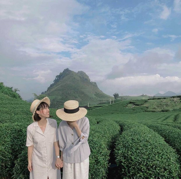 Kinh nghiệm du lịch Mộc Châu